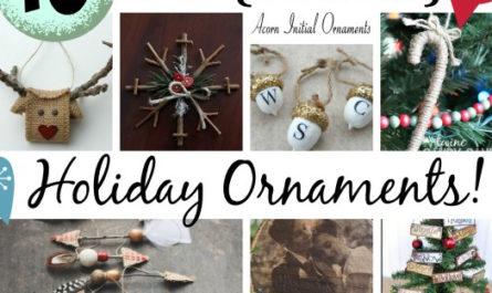 10 DIY {Natural} Holiday Ornaments!