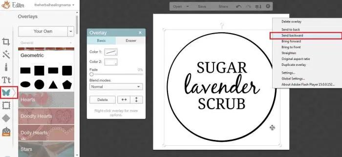 Create Labels on Picmonkey 8