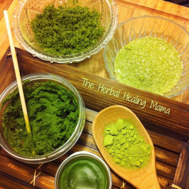 Organic Matcha - Green Tea Powder by Kiss Me Organics – Product Review