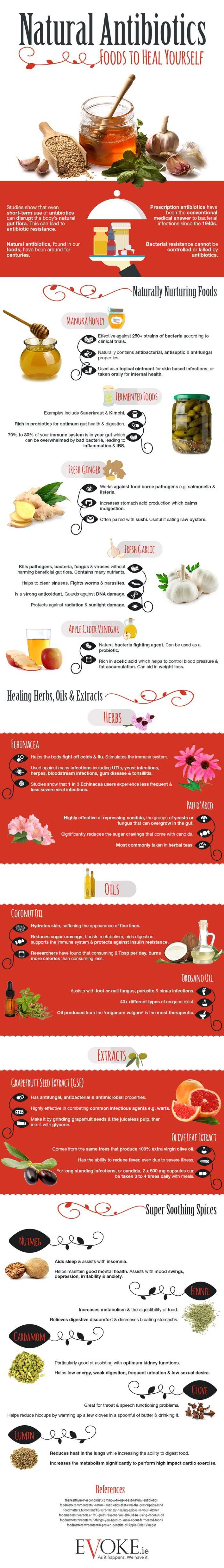 Natural Antibiotics, Foods to Heal Yourself